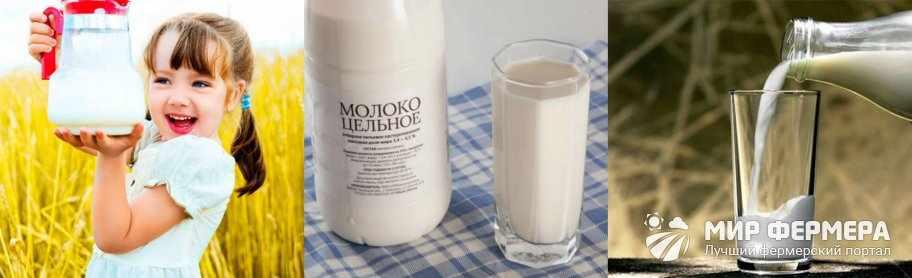 Польза нормализованного молока