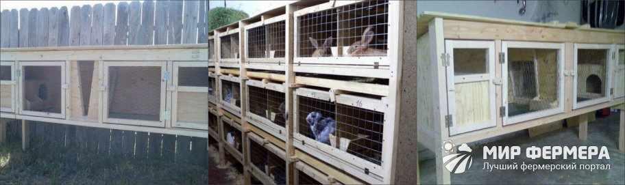 Виды клеток для кроликов