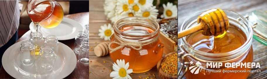 Условия хранения меда
