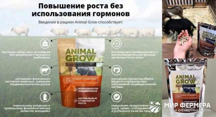 Animal Grow польза и вред