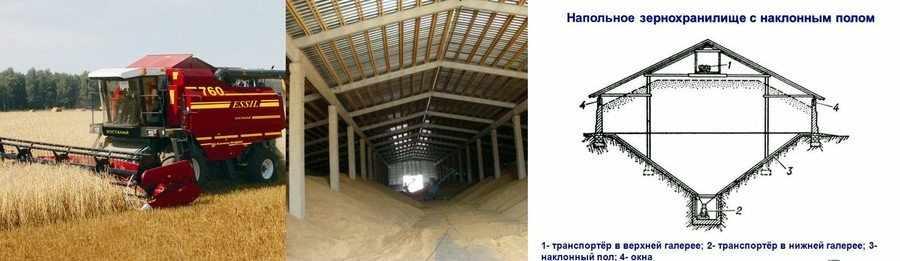Хранение пшеницы