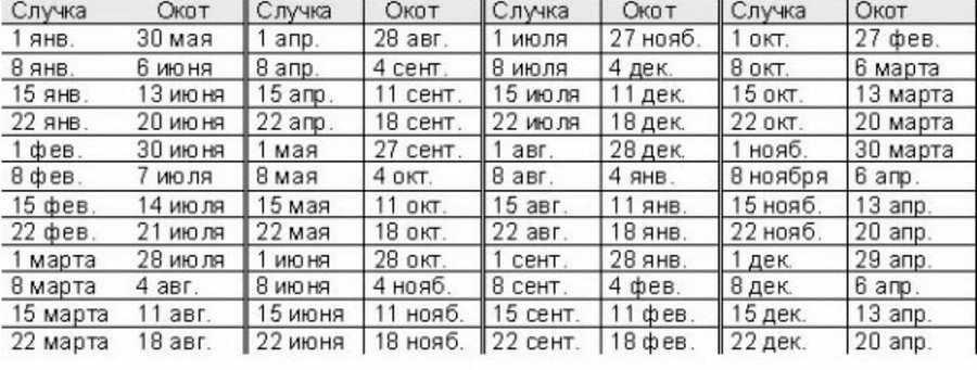 Календарь окота коз