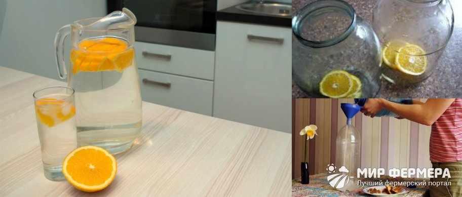 Березовый сок с апельсином