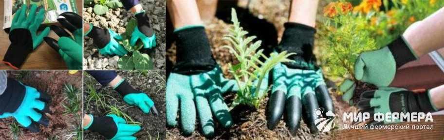 Как применять Garden Genie Gloves