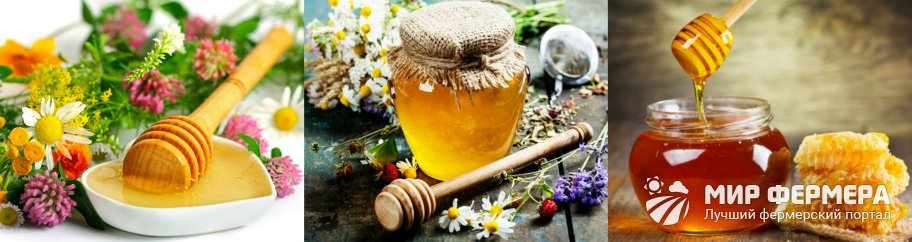 Мед из разнотравья