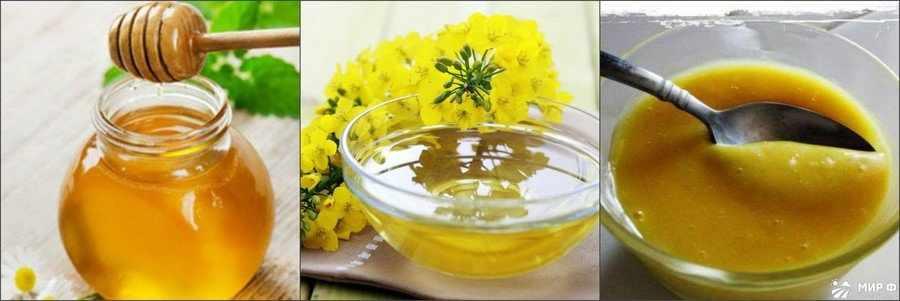 Рапсовый мед полезные свойства