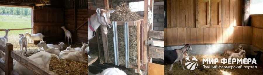 Сарай для коз своими руками