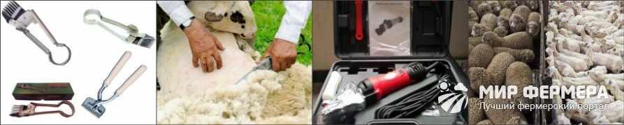 Машинка для стрижки овец какую выбрать