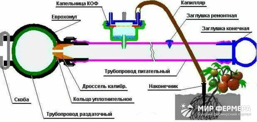 Как сделать систему полива из медицинских капельниц