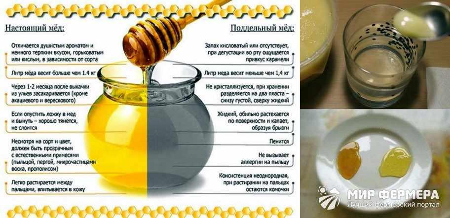Как проверить мед водой
