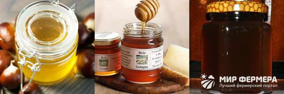 Каштановый мед фото