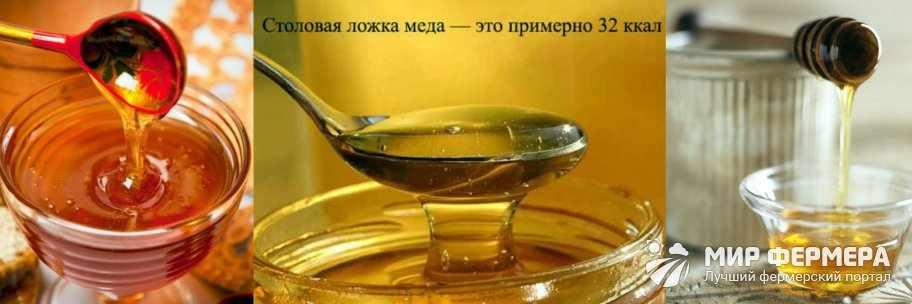 Сколько калорий в ложке меда