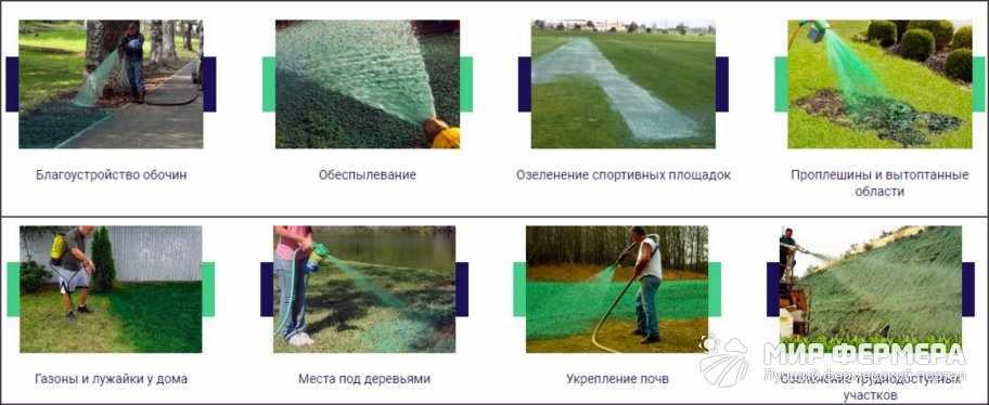 Жидкий газон использование