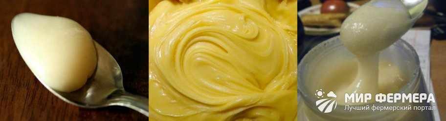 Фацелиевый мед цвет
