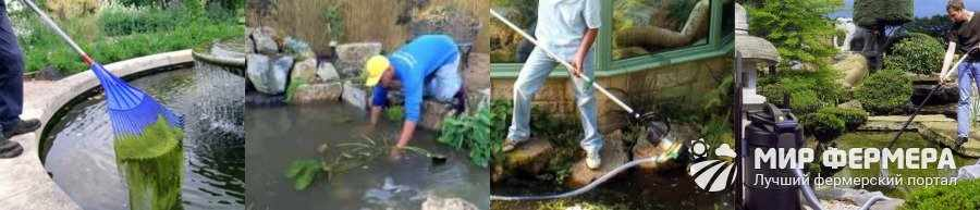 Как сохранить рыбу в пруду зимой