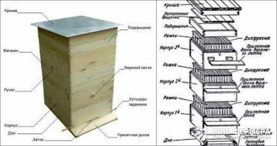 Из каких частей состоит корпус улья