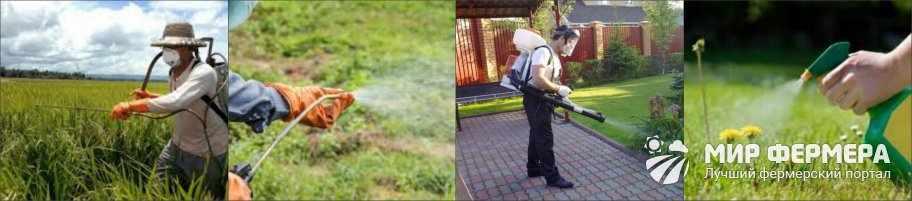 Защита при работе с гербицидами