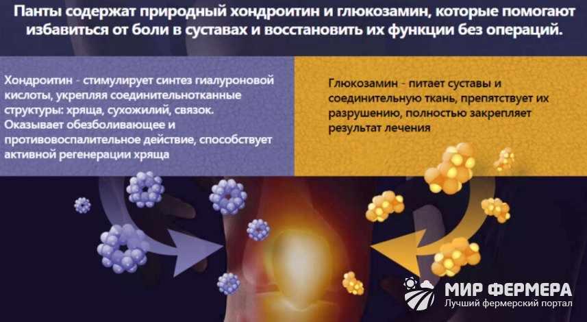 Крем Artrodex состав