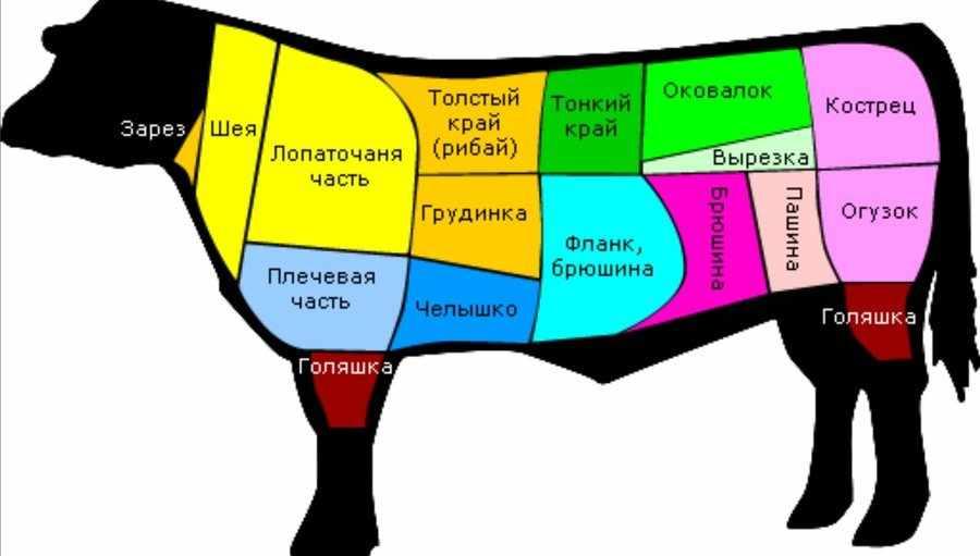 Как разделать корову
