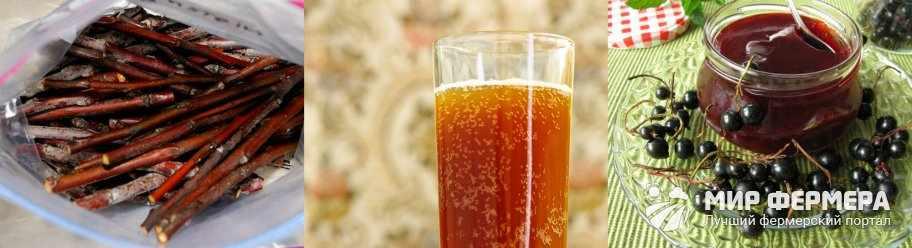 Березовый сок с черной смородиной