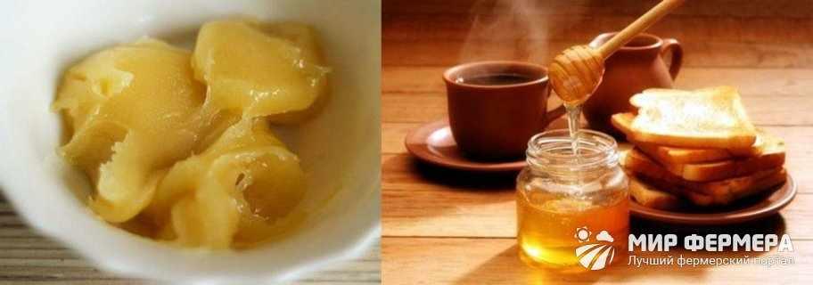 Как растопить мед в духовке