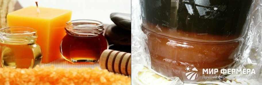 Как распознать падевый мед
