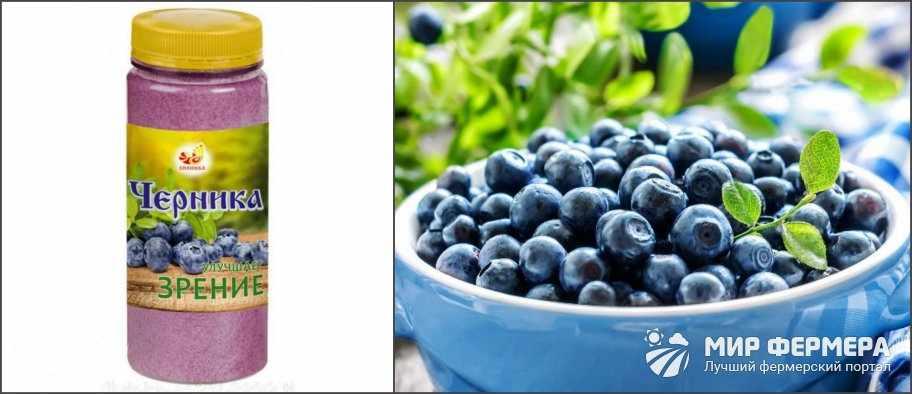 Полезные свойства ягод черники