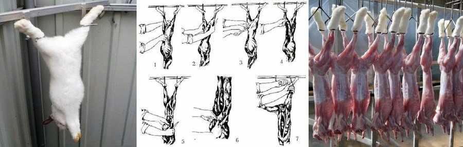 Как разделать кролика