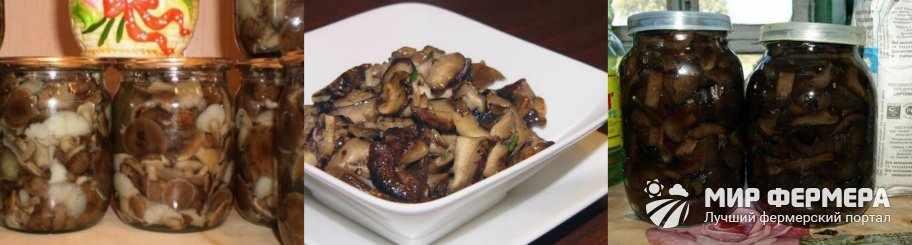 Как готовить грибы свинухи