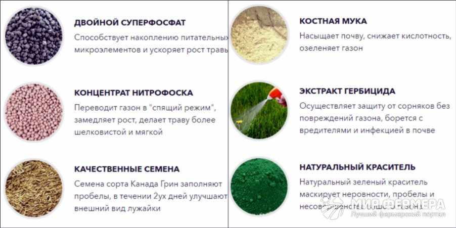 Жидкий газон АкваГразз состав