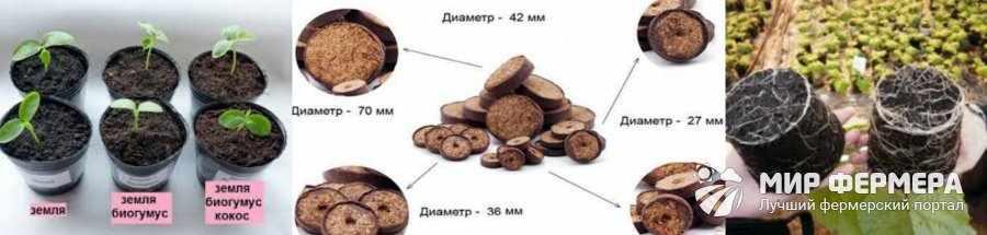 Кокосовый субстрат и таблетки для рассады