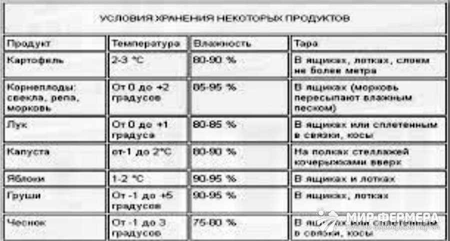 Температура хранения овощей в подвале и погребе