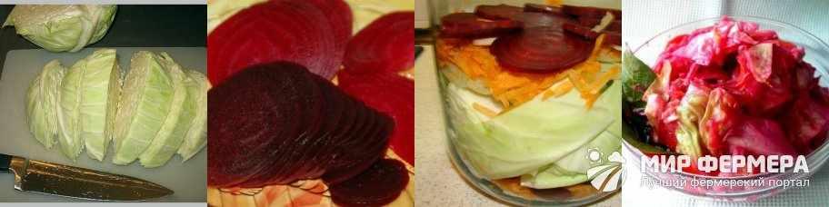 Капуста со свеклой кусками рецепт