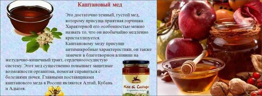 Каштановый мед польза