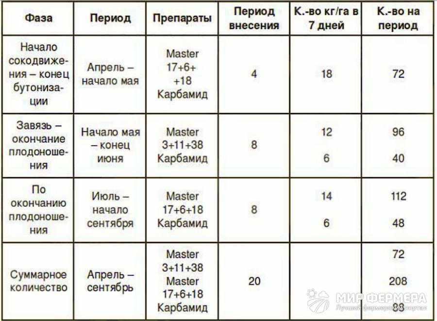 Таблица удобрения клубники