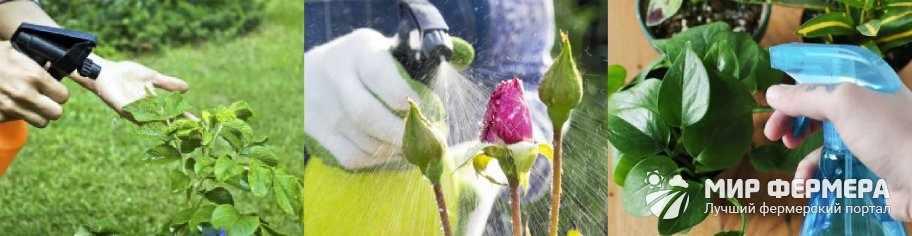 Алатар для защиты цветов