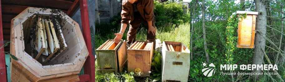 Ловушка для пчел на 7 рамок