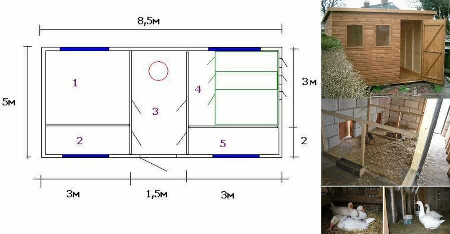Строительство гусятника