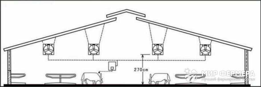 Строительство коровника на 10 голов