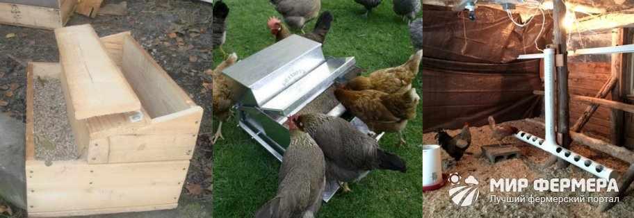 Из чего можно сделать кормушку для кур