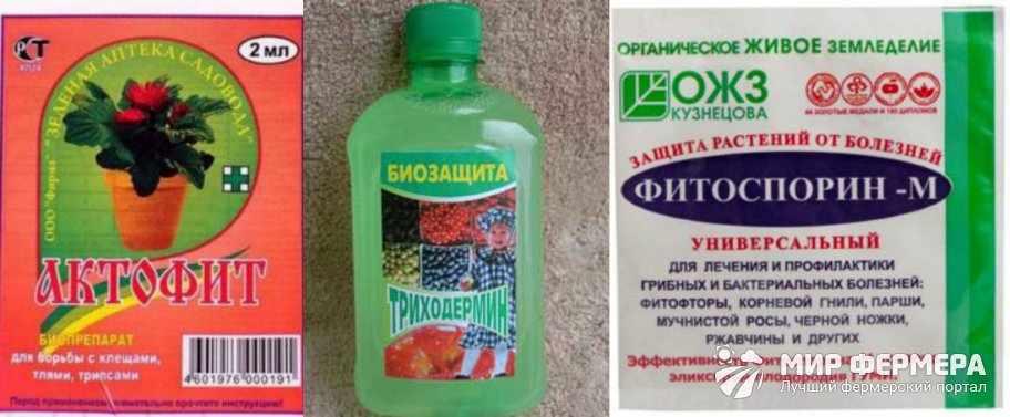 Биологические средства против болезней