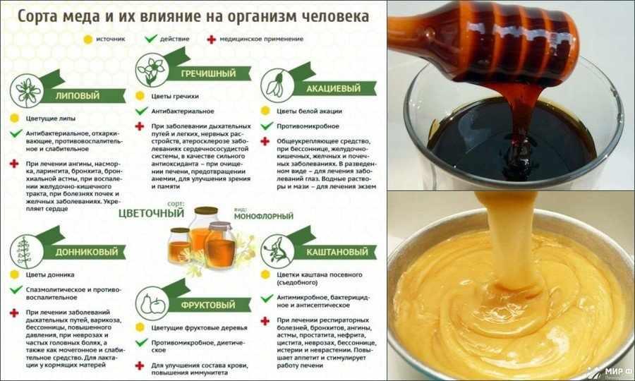 Какой сорт меда самый полезный
