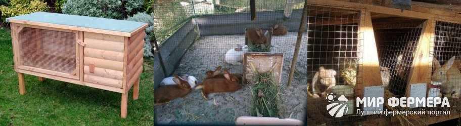 Из чего можно сделать клетку для кроликов