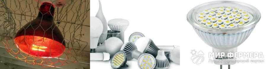 Светодиодные лампы для курятника