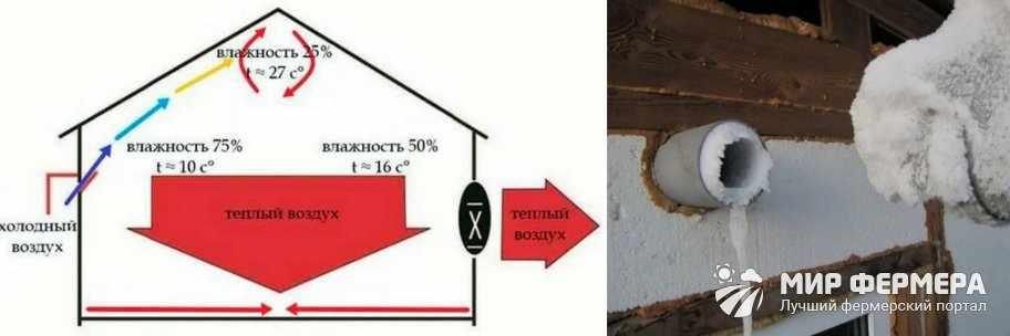 Как сделать вентиляцию в курятнике