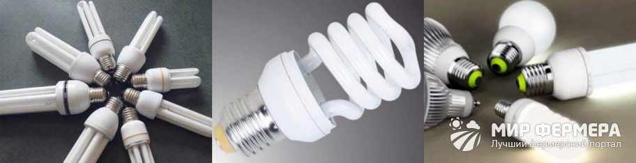 Энергосберегающие лампы для курятника