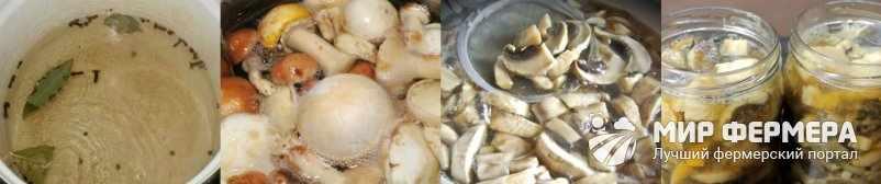 Маринованные белые грибы с уксусом