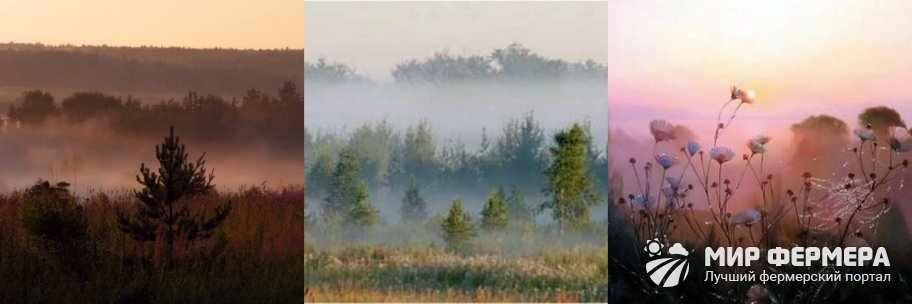 Поиск воды по туману