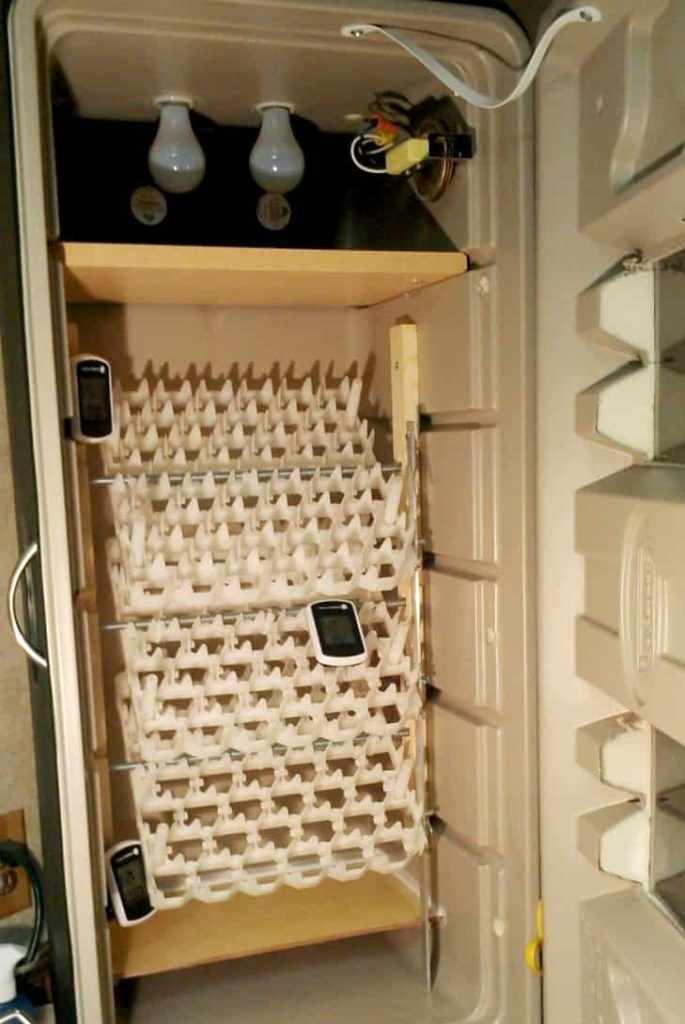 Инкубатор своими руками из холодильника