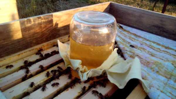 требования к пчелиным кормушкам